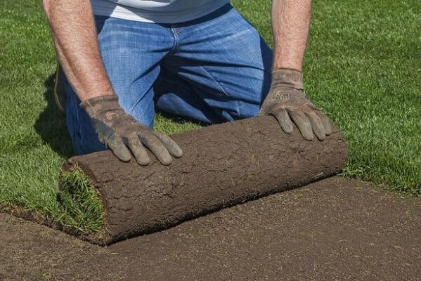 рулонный газон как укладывать